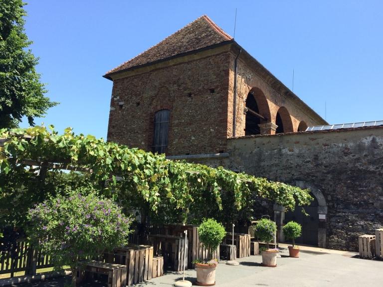 Weinkeller Laube Copyright SchlossSeggau